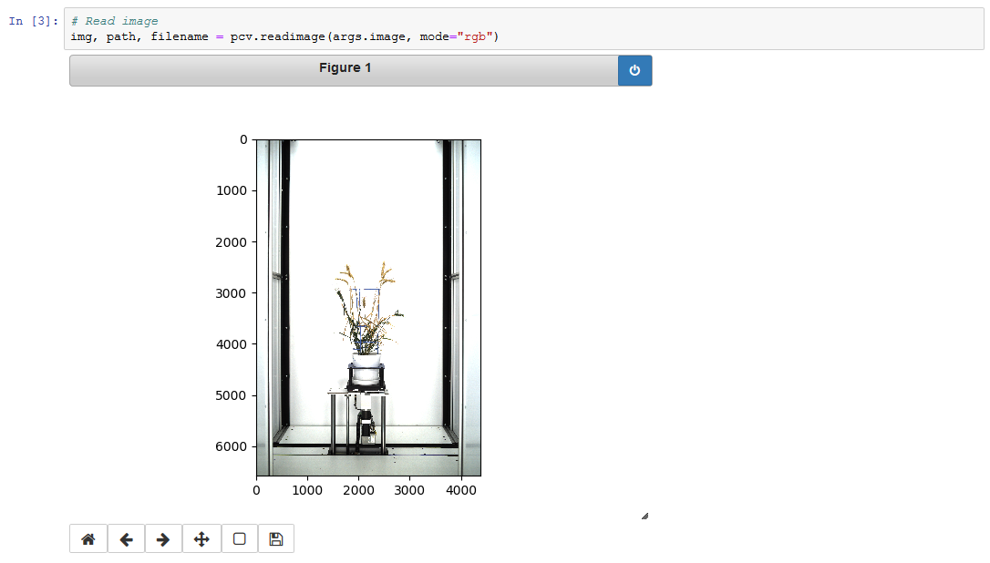 Screen capture from Jupyter Notebook showing an inline image